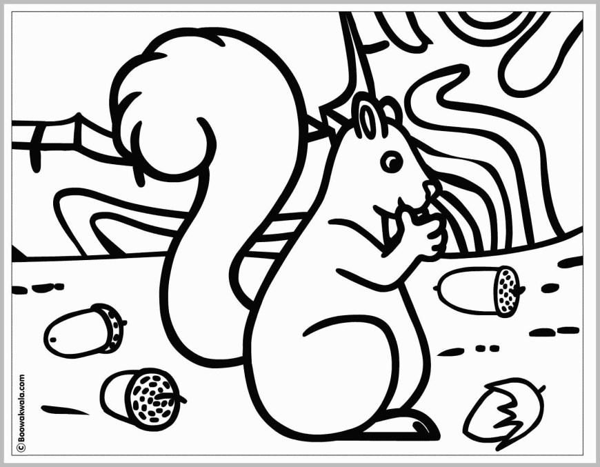 Acorn Coloring Pages 55 New Release Pics Of Acorn Coloring Pages Best Of Coloring Page