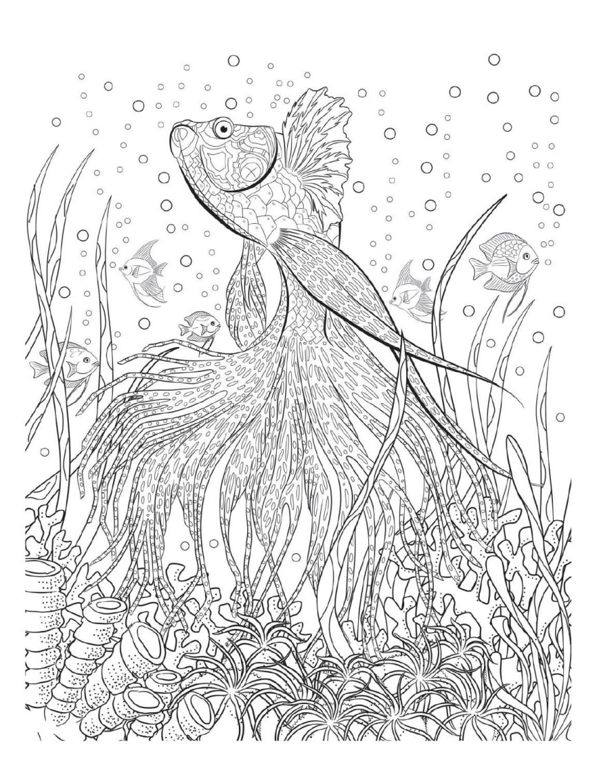 Amazing Coloring Pages Amazing Coloring Pages For Adults At Getdrawings Free For