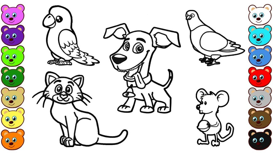 Animal Coloring Pages Home Animals Coloring Pages Youtube