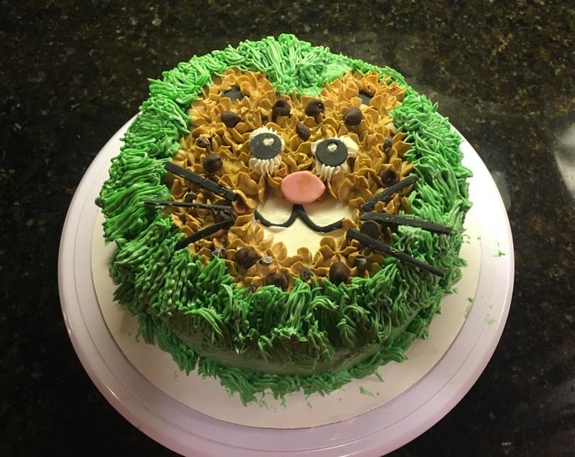 Cheetah Birthday Cake Cheetah Birthday Cake For My Daughter Inspired Her Favorite