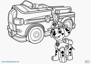 Construction Coloring Pages Construction Coloring Pages Pdf Cat Vehicle Road Book Printable
