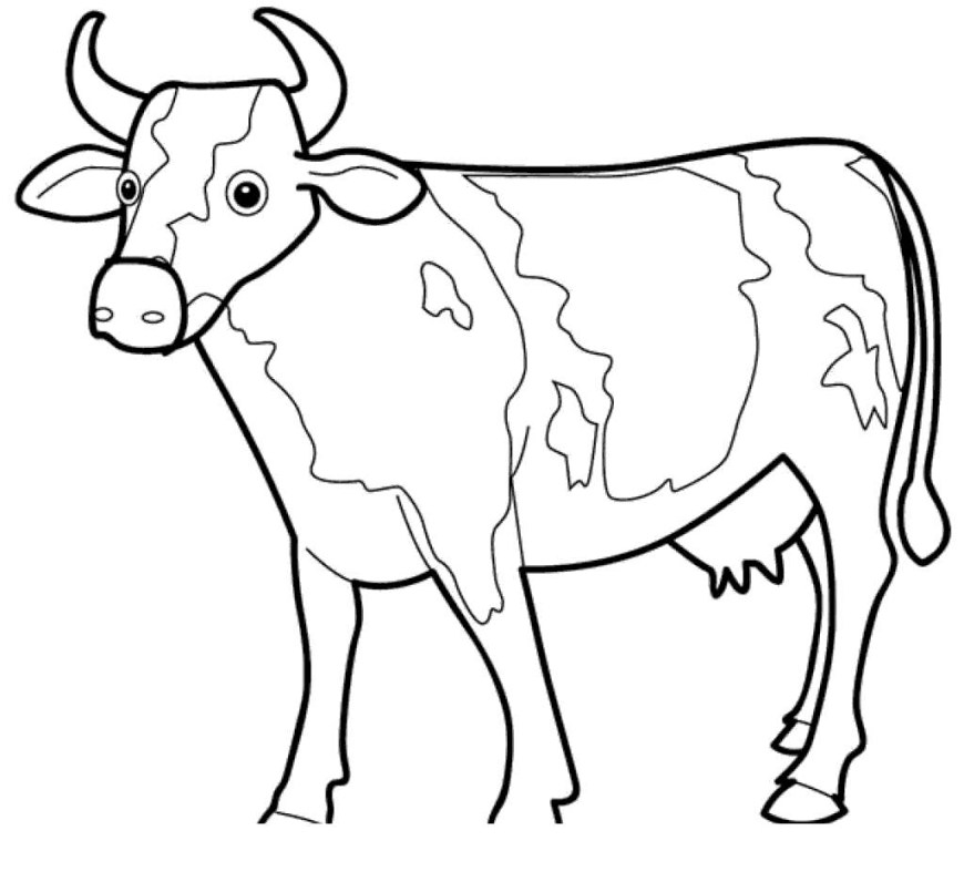 Cow Coloring Page Black And White Cow Coloring Pages In Inspirationa Get Coloring Page