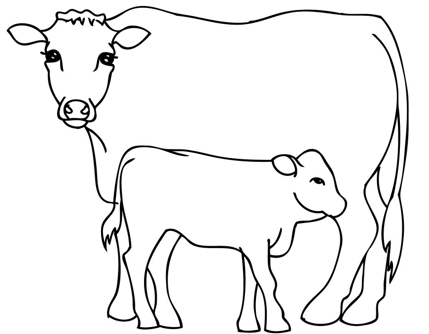 Cow Coloring Page Cattle Coloring Pages Free Inside Cow Bitslice