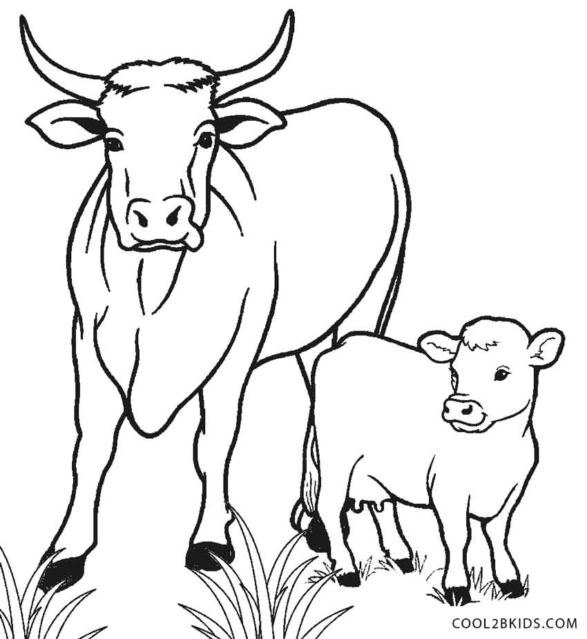 Cow Coloring Page Cow Coloring Pages Free Printable A Page For Kids 850926 Attachment