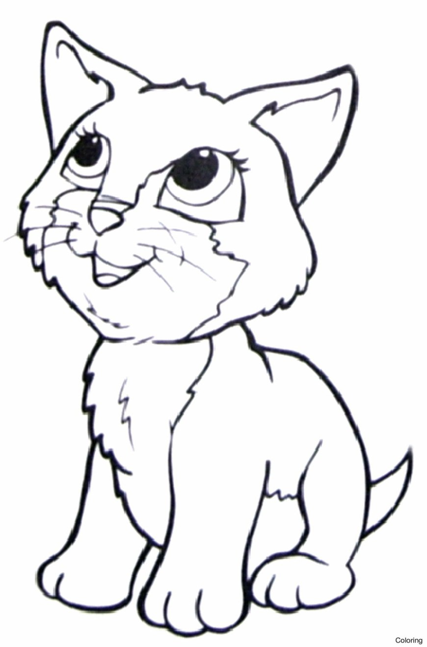 Cute Cat Coloring Pages Cute Cat Coloring Pages To Print At Getdrawings Free For