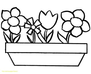 Free Coloring Pages To Print Print Out Flower Coloring Pages Medquit Printable Free New Flowers