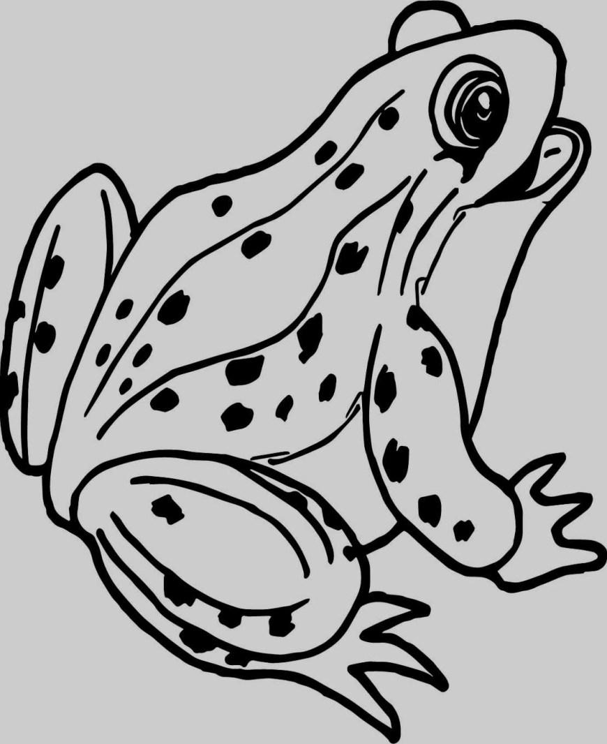 Frog Coloring Pages Frog Coloring Pages Skill Frog Coloring Pages For Preschoolers Vel
