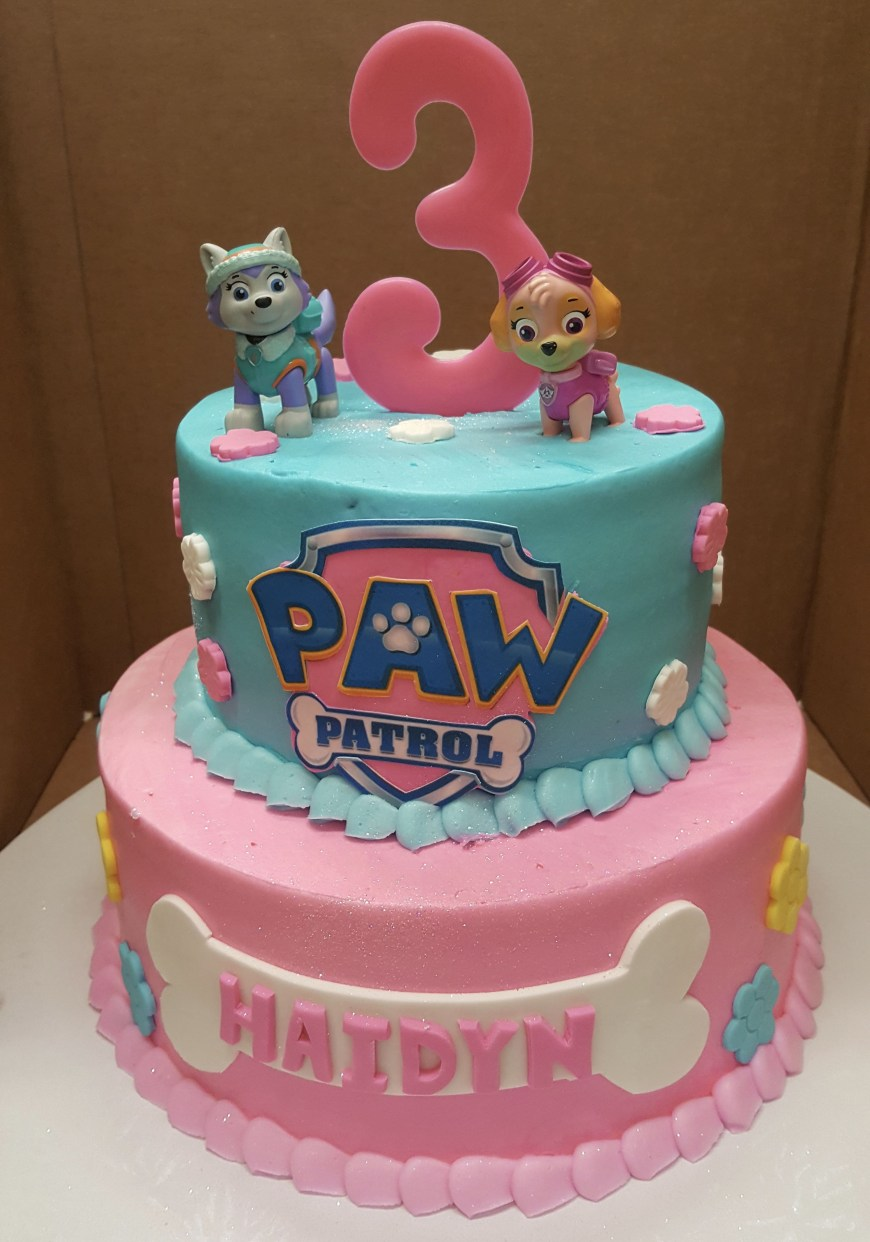 Girls Birthday Cakes Calumet Bakery Girls Paw Patrol Cake Girls Decorated Cakes Paw