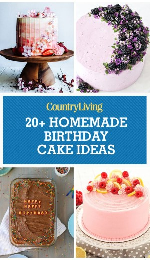 Homemade Birthday Cake Recipe 24 Homemade Birthday Cake Ideas Easy Recipes For Birthday Cakes