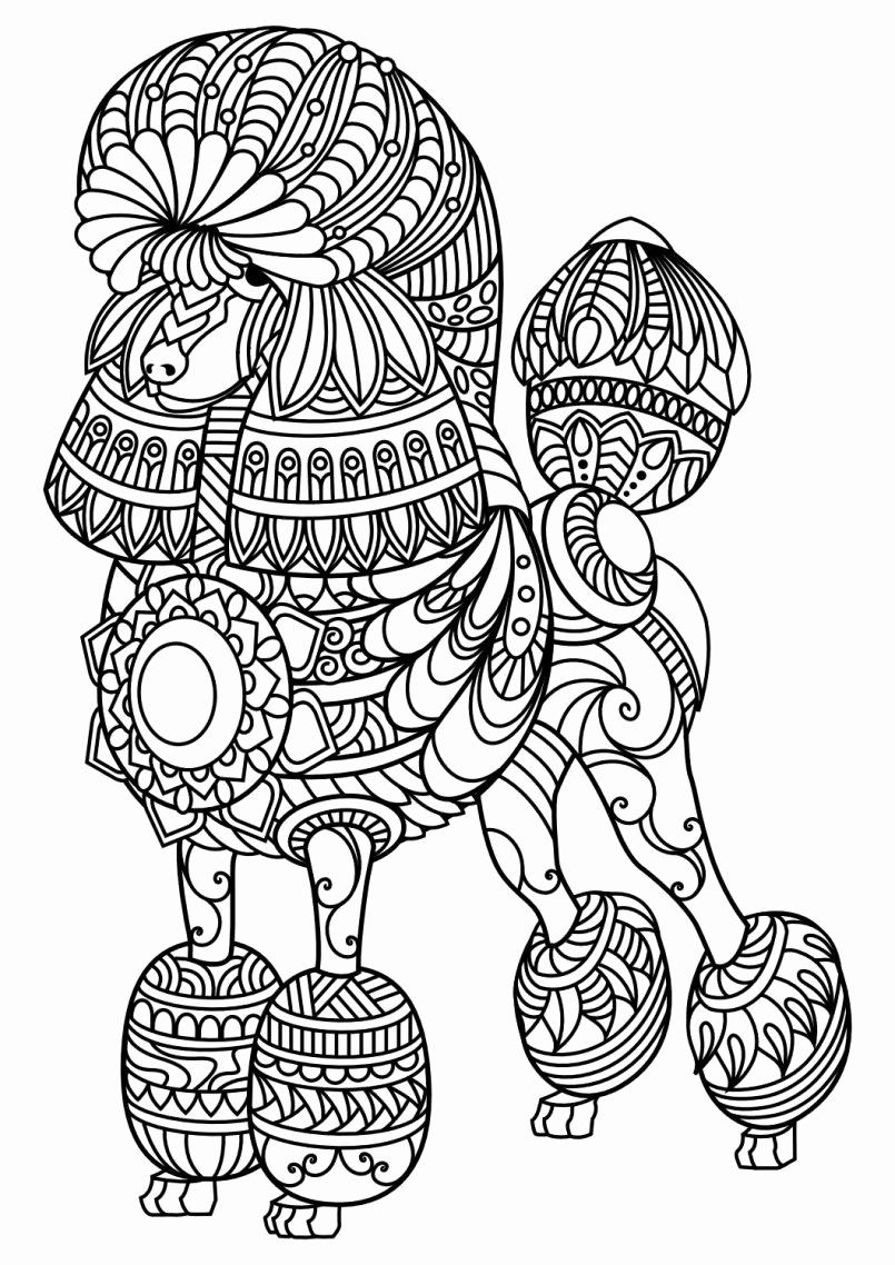 Mandalas Coloring Pages Free Mandala Coloring Pages Pdf At Getdrawings Free For