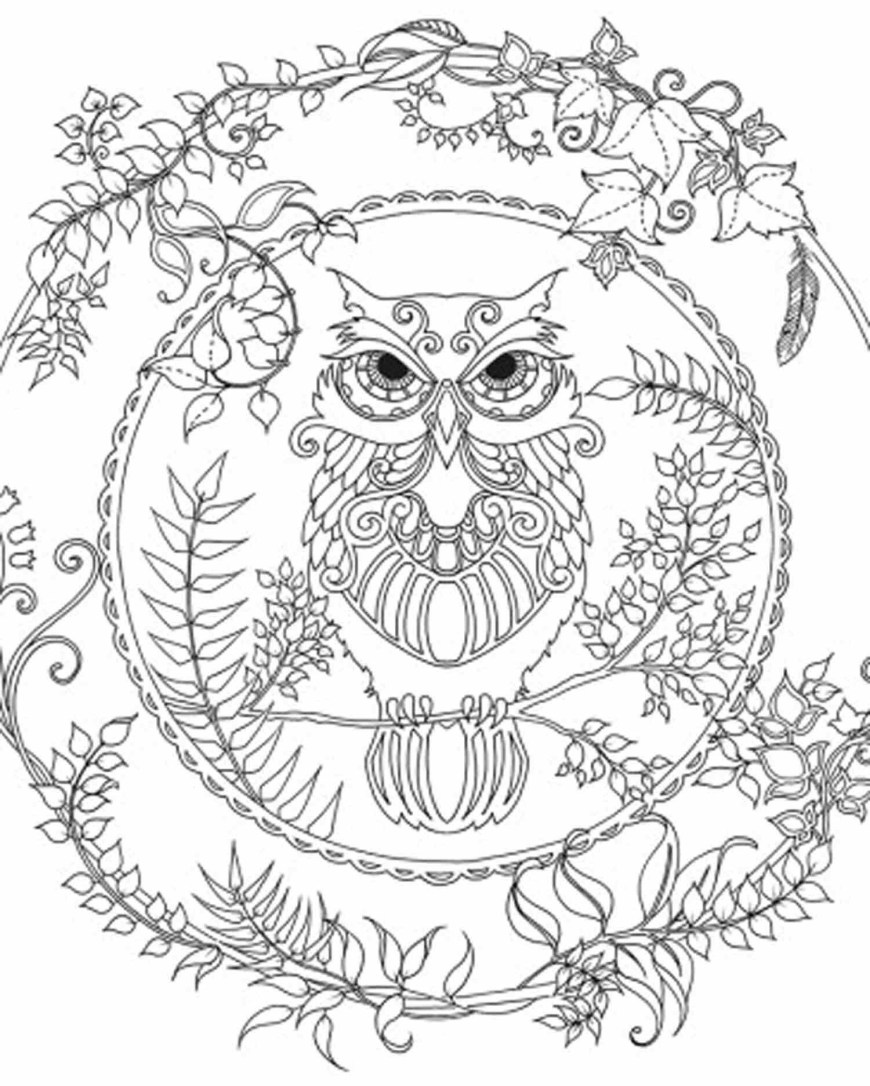 Owl Coloring Pages For Adults Free Printable Owl Coloring Pages For Adults Papers And Essays