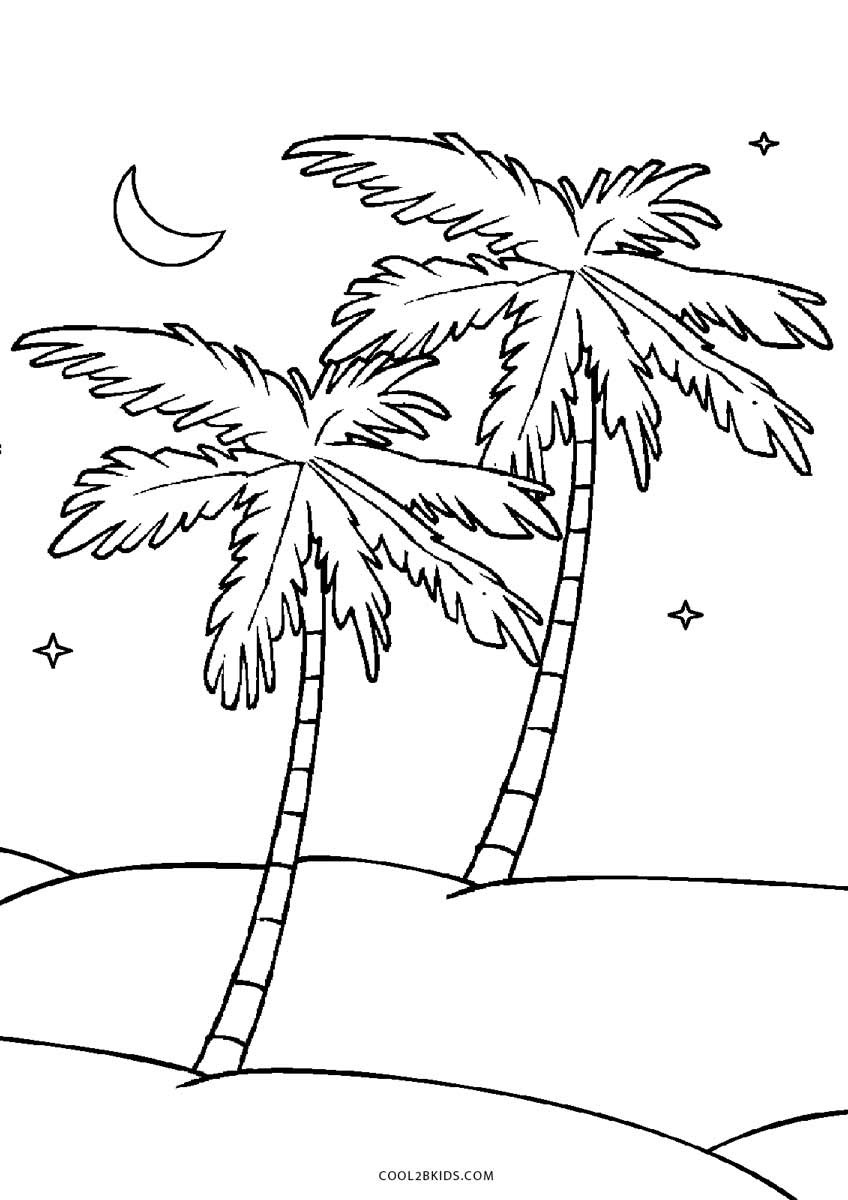 Palm Tree Coloring Page Free Printable Tree Coloring Pages For Kids Cool2bkids