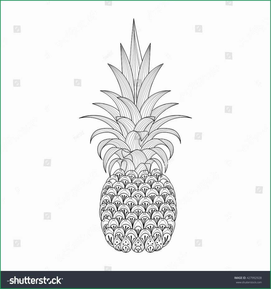 Pineapple Coloring Page Pineapple Coloring Page For Adults Beautiful Hand Drawn Ornate