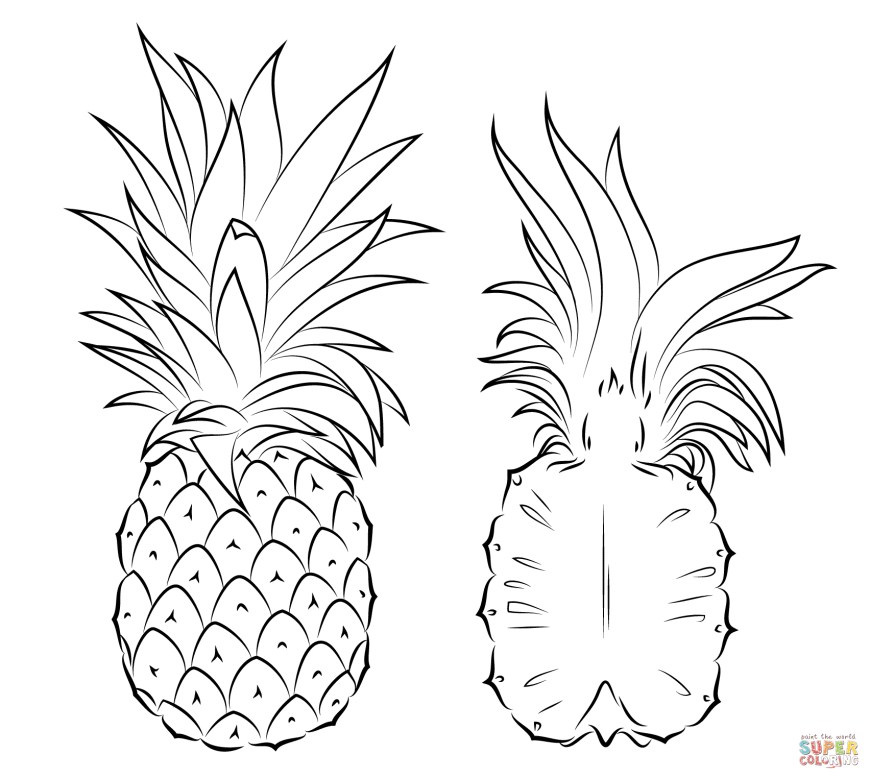 Pineapple Coloring Page Pineapples Coloring Pages Free Coloring Pages