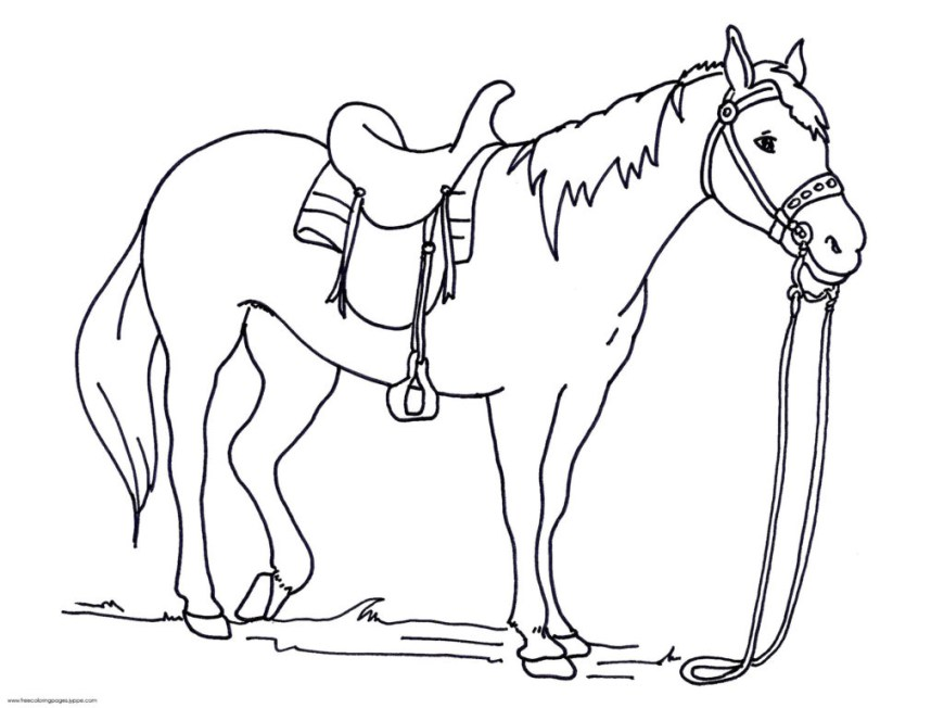 Printable Horse Coloring Pages Printable Horse Coloring Pages For Kids With Free Printable Horse