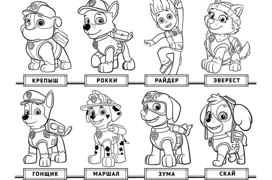 Printable Paw Patrol Coloring Pages Free Printable Paw Patrol Coloring Pages Color Bros