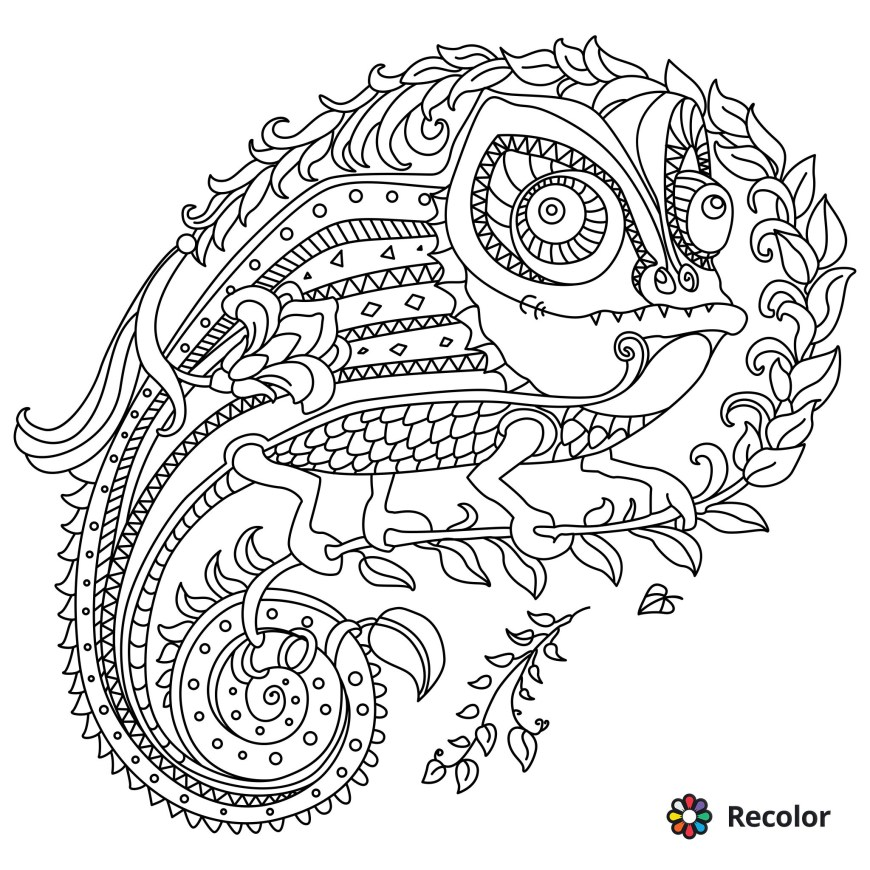 Recolor Coloring Pages Recolor Coloring Pages Fun Time