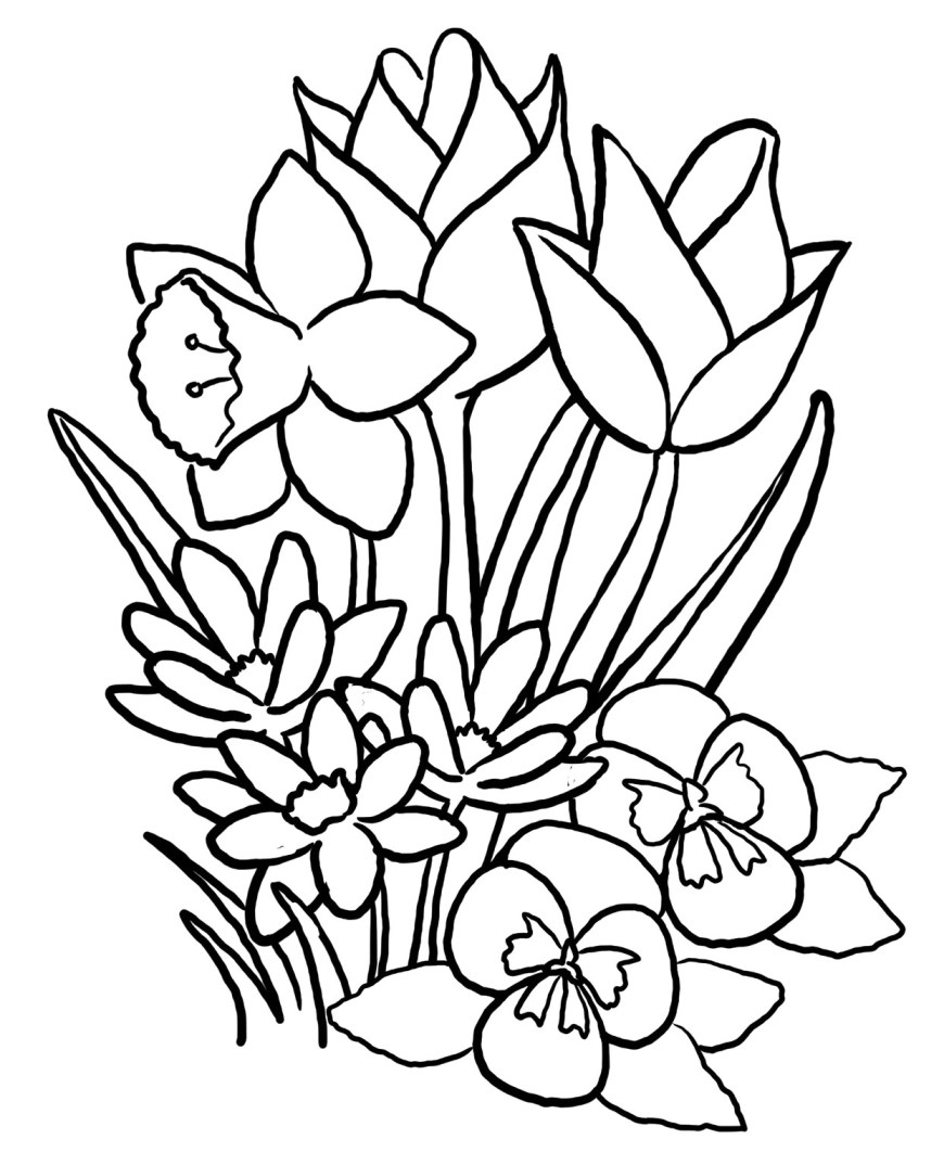Spring Coloring Page Color Pages For Spring Wuming