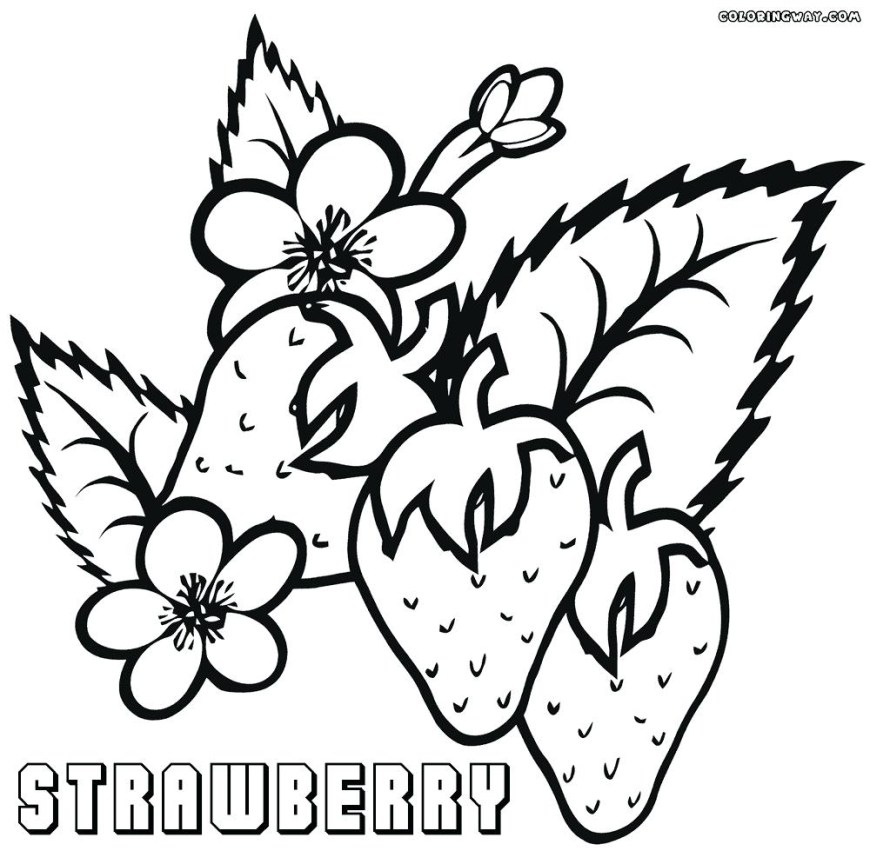 Strawberry Coloring Page Strawberry Coloring Pages Free New Page Bitslice