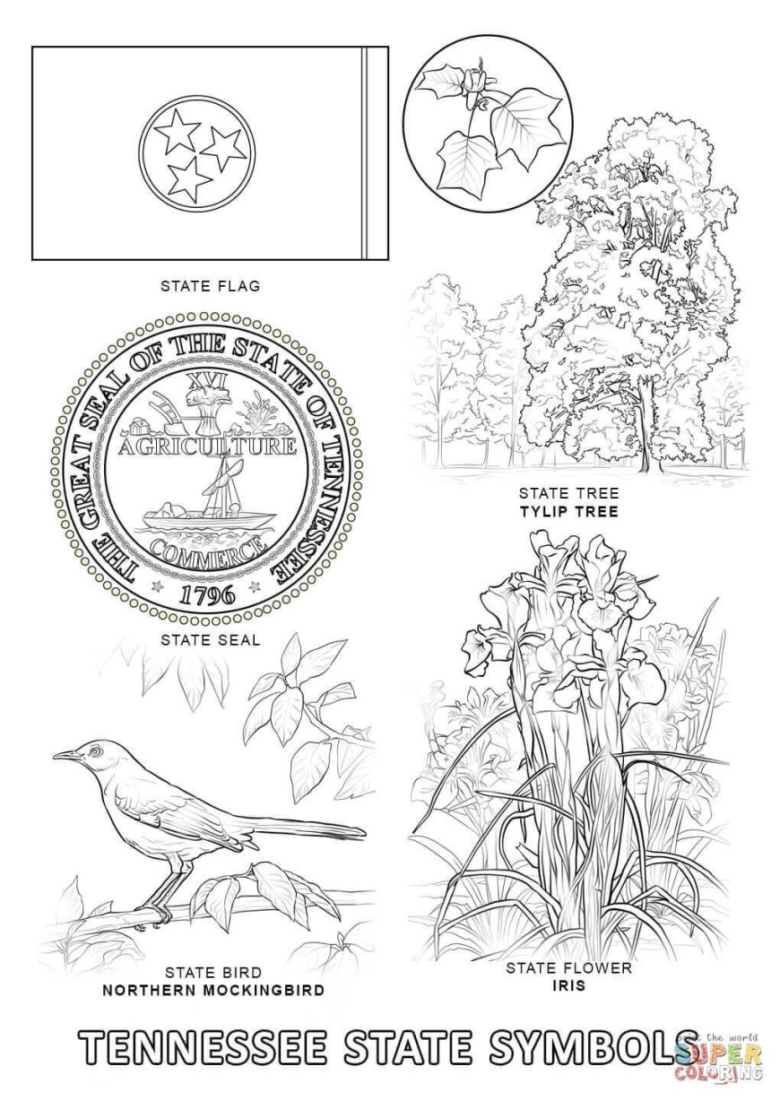 Texas Coloring Pages Texas Symbols Coloring Pages Elegant Tennessee State Flag Coloring