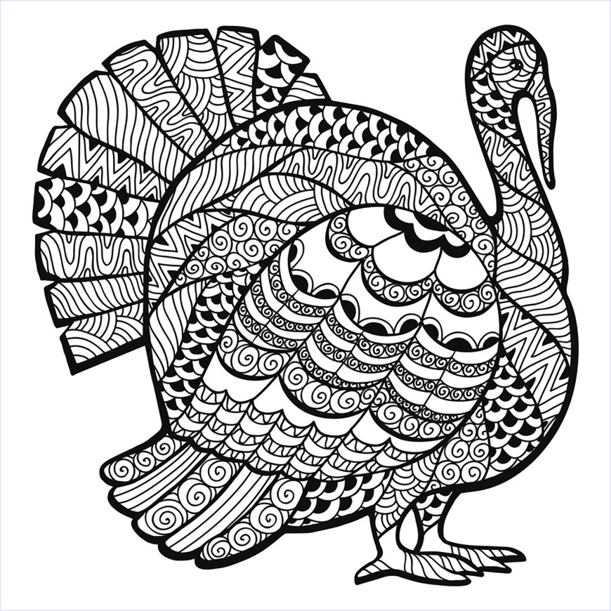 Turkey Coloring Pages Turkey Zentangle Coloring Sheet Thanksgiving Adult Coloring Pages