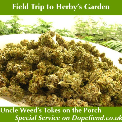 Field Trip to Herby's Garden with Dopefiend – Choogle On! #57