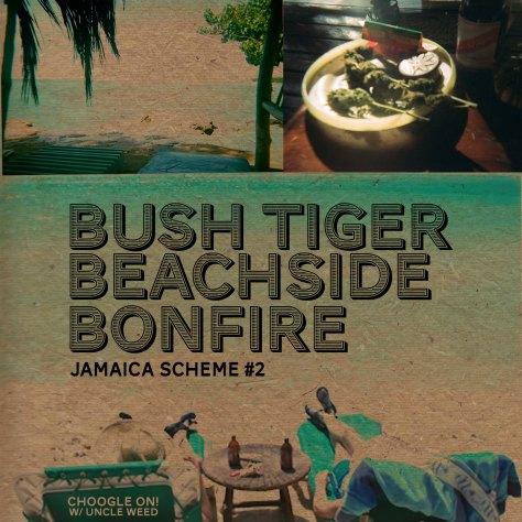 Bush Tiger Beachside Bonfire – Choogle On Jamaica Scheme #2