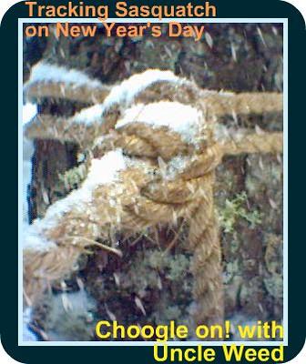 Tracking Sasquatch on New Year's Day – Choogle On! #58