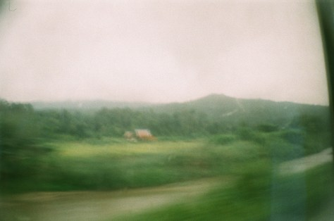 Towns and Trains: green fields from the train