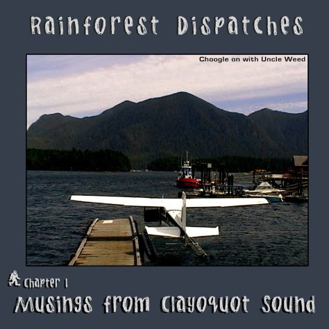 Musings from Clayoquot Sound – Rainforest Dispatches, chapter 1/9