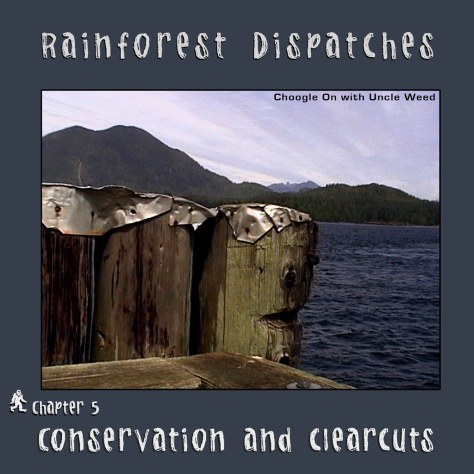 Conservation and Clearcuts – Rainforest Dispatches, chapter 5/9