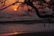 Guanacaste Sunset
