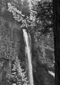 Multnomah Falls - From the Trail