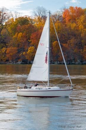 Hudson River Fall Foliage Cruise 2013-12