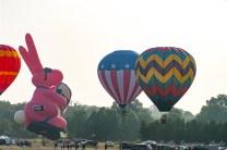 QuickChek Balloonfest 2009 - 038