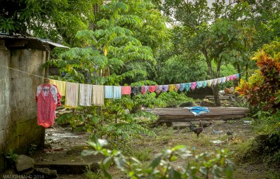A zipless line of jungle panties and a rooster make me smile every time. A rainbow in a rainforest. What can I say, I just love this image and the mood it exudes. I honestly can't explain it.