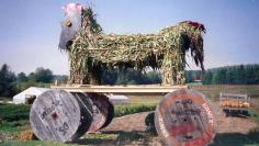Trojan Horse made out of cornstalks