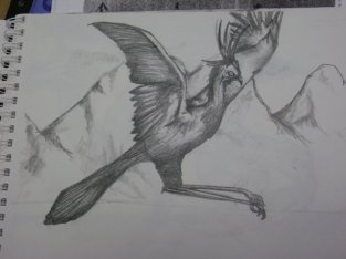 Sikkema Drawing 6