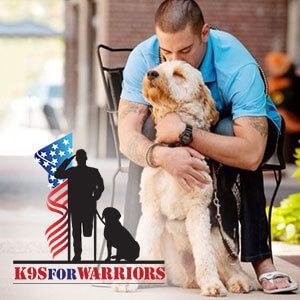 k9s-for-warriors