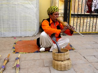 Snake Charmer at City Palace, Jaiupr