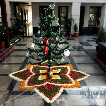 We stopped for lunch at a hotel that was preparing for a wedding. They had decorated the base of this Christmas tree with flower petals and grass clippings. Quite amazing.