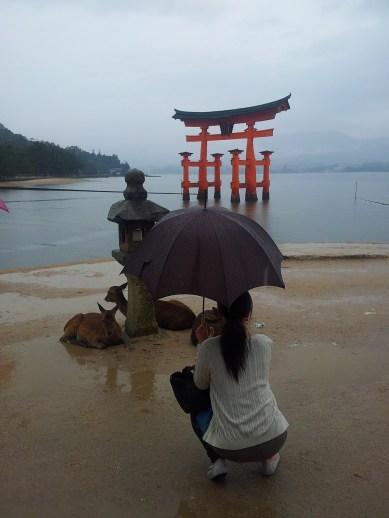 The Miyajima torii, three deer and a woman with an umbrella
