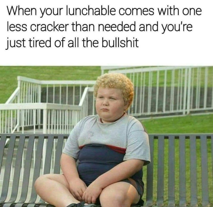 Meme - When your lunchable comes with one less cracker and you're just tired of all the bullshit