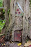 Fairy Door, Furzey