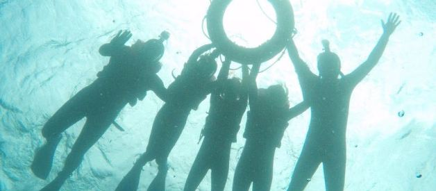 Jurnal de Fotograf în Australia -a doua parte – Marea Barieră de Corali și Pădurea Tropicală