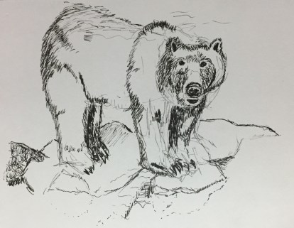2017 05 02 Bear