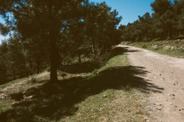 KM18 - Nonstop
