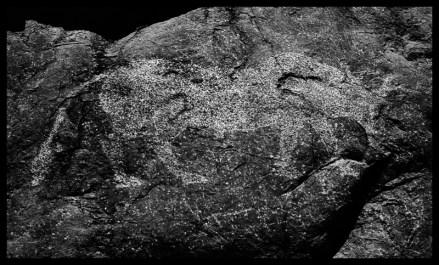 Rock Art - bull