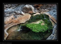 Rock Pool Wadi Quria