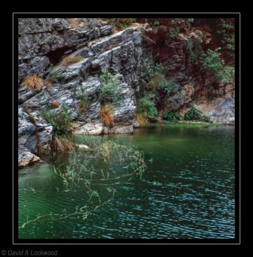 Rocks & water weed